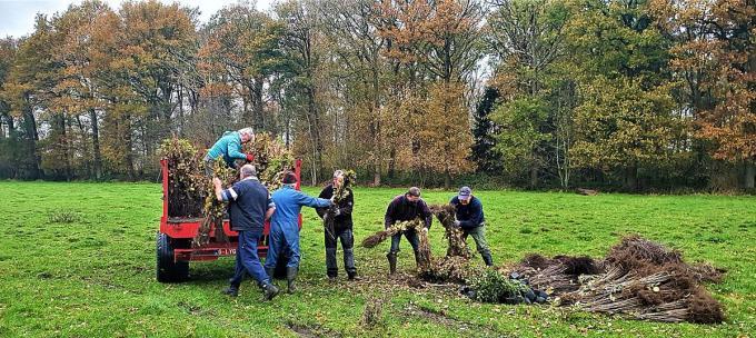 Op het nieuw bosgedeelte werden er 7.000 bomen en struiken geplant.© LV