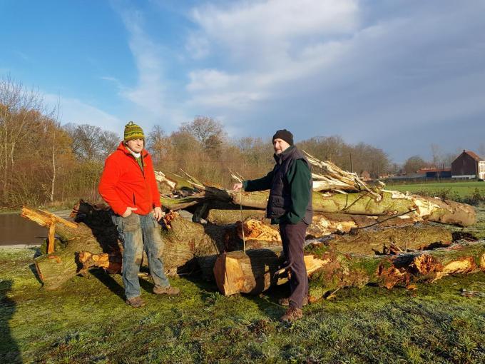 Landschapsarchitect Carl Vandenberghe en groenvrijwilliger Jan Vanleeuwen bij de twee omgehakte zomerlindes. (foto GV)