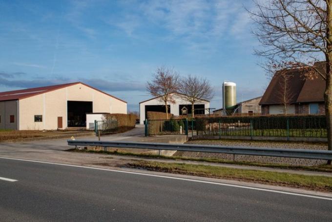 De kalkoenkwekerij van Luc Lavens kwam al eerder in het vizier toen in het centrum sprake was van geurhinder.© foto Kurt