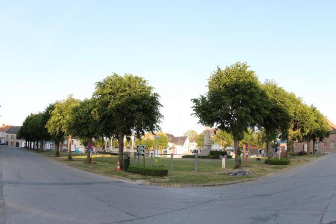 De huidige bomen worden gerooid en vervangen door nieuwe.©Eric Flamand EF