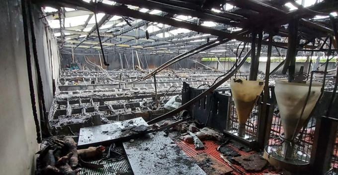 In september 2020 deed zich een stalbrand voor bij een varkensbedrijf in Moerkerke.