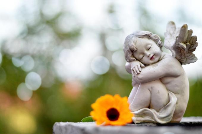 Er komt nog dit jaar een sterrenweide op de Tieltse begraafplaats.© Getty Images/iStockphoto