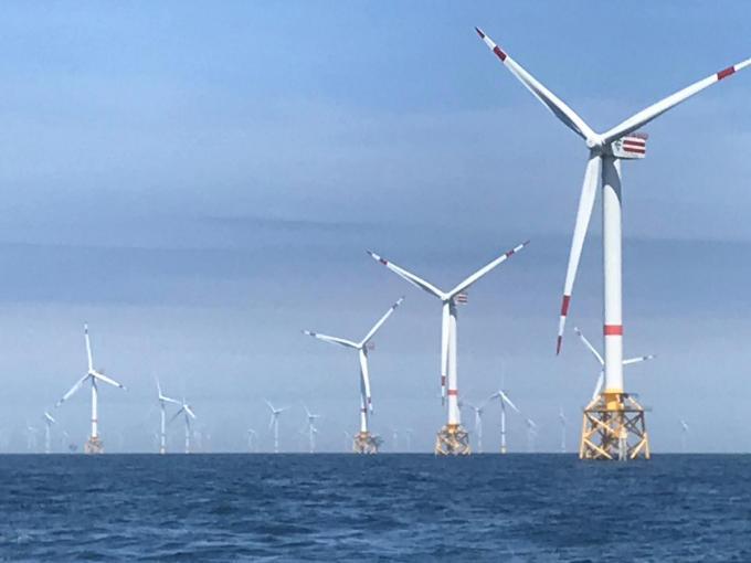 Vooral meeuwen blijken tegen de windmolens aan te vliegen.© ML