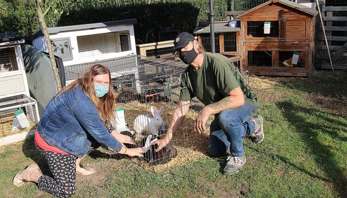 Eveline Bultynck en haar oom Jean bij enkele konijntjes. Er is plaats voor vijftig, maar 'het aanbod' is veel groter. (foto LV)