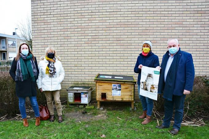 Onder meer op het Biezenhof vind je een voeder- en slaaphokje voor de zwerfkatten.© (foto Jos)