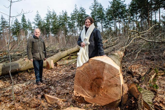 Anne Braet en Ivan De Clerck van de vzw Bescherm Bomen en Natuur in het Ryckeveldebos.©Davy Coghe Davy Coghe