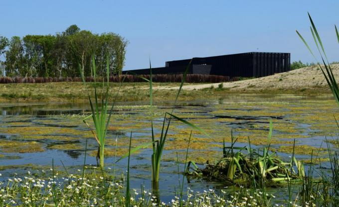 Het Zwin Natuur Park mocht een derde minder bezoekers verwelkomen in 2020 dan in 2019, maar in de zomer en het najaar werden records genoteerd.© Provincie West-Vlaanderen