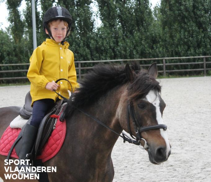 Enkel manegepaarden kunnen nog gebruikt worden voor lessen, hier in Sport Vlaanderen Woumen.©Centra gf
