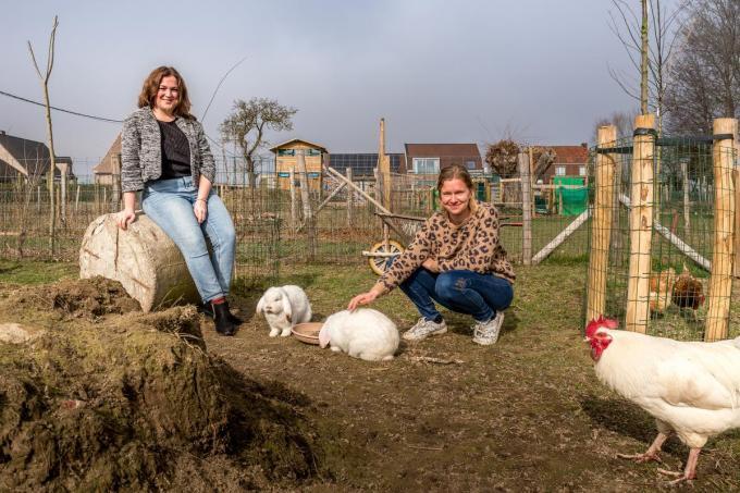 Zaakvoerster Joke Goemaere, met enkele boerderijdieren. Links schooldirecteur Ine Vandecaveye.© foto WME