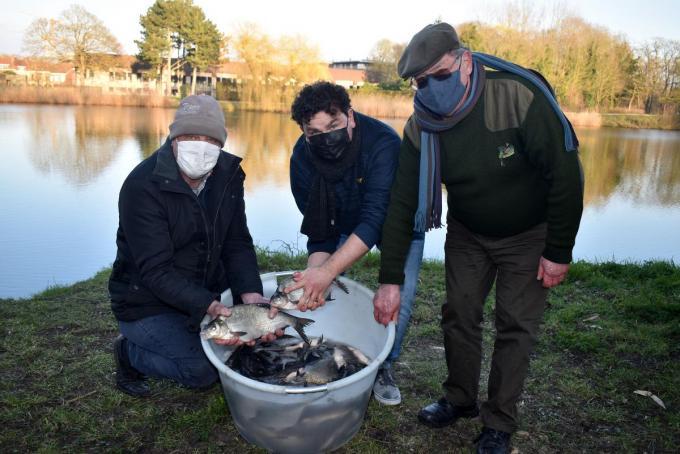 Schepen Valentijn Despeghel zet samen met Antonio Muyle en Bertrand Volckaert de eerste lading van één ton vis uit.© Erwin Gabriels