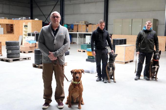 We zien links bedrijfsleider Johan Weckhuyzen van K9 Detections met hond Primo en zijn medewerkers Shane Vanacker met hond Qointreau en Bart Boudens met hond Olaf.©Peter MAENHOUDT