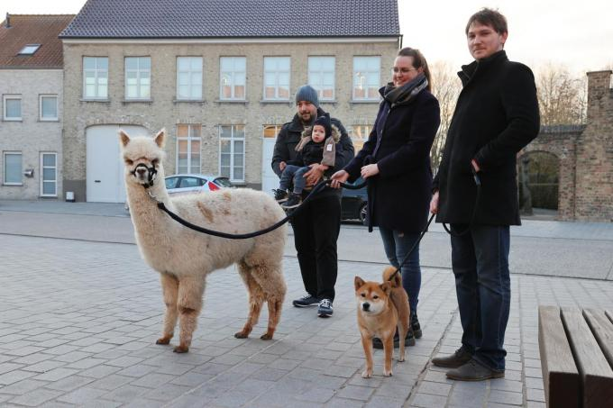 Alpaca Sputnik met Tom en Arthur Decostere, Maxime Huysman en David Van Moorleghem en Toshi. (foto MG)