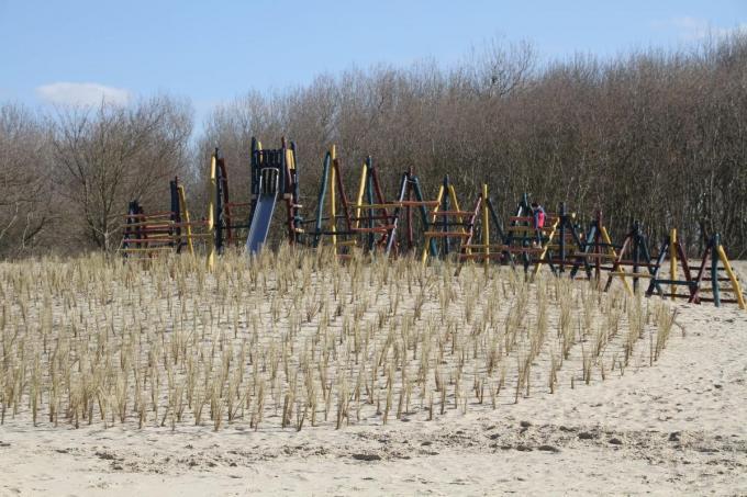 Het gras zorgt ervoor dat het zand blijft liggen.© DM