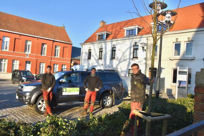 Wim Vanlancker (rechts op de foto) en zijn team plaatsten de nieuwe linde op Kooigemplaats.© (Foto EDB)