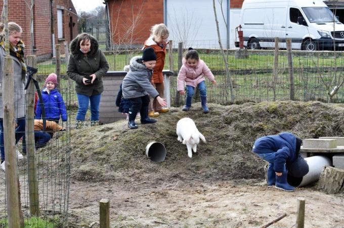 Joke Goemaere (links met sjaal) ontving deze week al enkele klassen van De Dorpsparel in haar nieuwe dorpsboerderij in de Dosseweg.© foto TVW