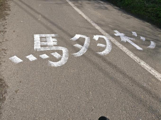 Wat de Japanse tekens betekenen, is voor velen een raadsel.© MD