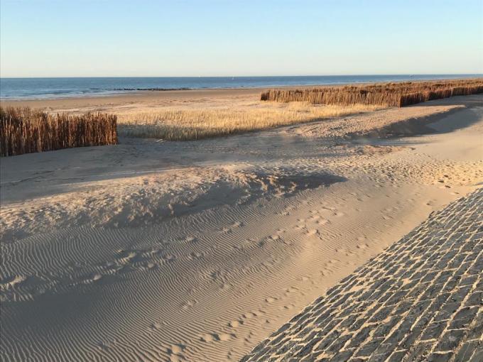 De aanleg van de duinen startte in het vroege voorjaar© Bliek Vermeire