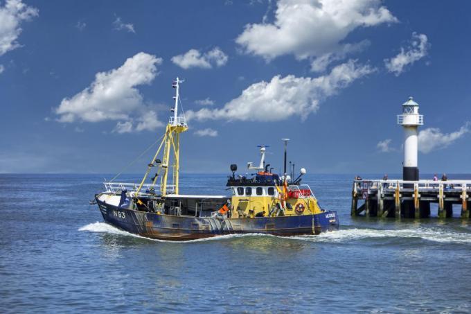 De documentaire 'Seaspiracy' focust op de ecologische impact die de visserij heeft. En dat schept geen fraai beeld. (foto Getty Images)© Arterra/Universal Images Group via Getty Images