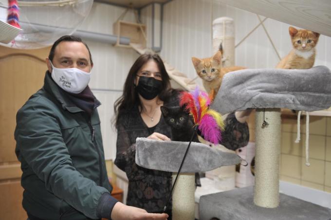 Schepen Bert Gunst en 'kattenmama' Sandra Wormleighton.© IV