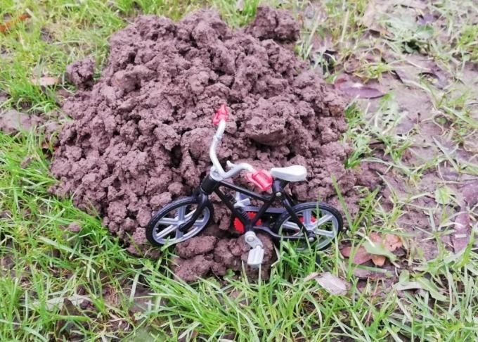 De Mol is thuis, want zijn fiets staat voor de deur. Humor was nooit ver weg in de klas van meester Jef.