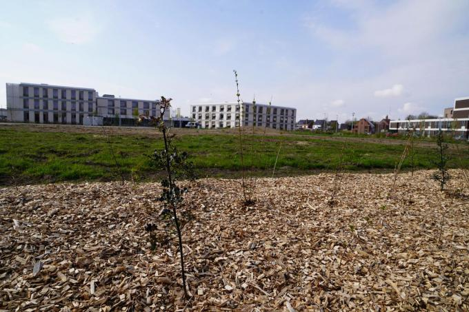 Op dit terrein, gelegen voor woonzorgcentrum De Zonnewende, verschijnen straks de warme tuinen.© LB