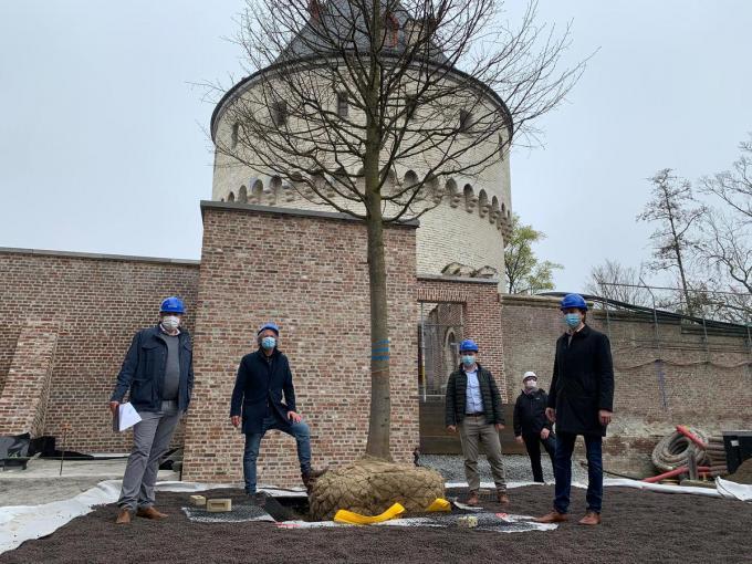 Schepen Wout Maddens stak een handje toe bij het planten van de linde.© Stad Kortrijk