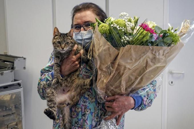 Annick Decoutere staat onze dierlijke metgezellen al meer dan veertig jaar bij. (foto CLL)