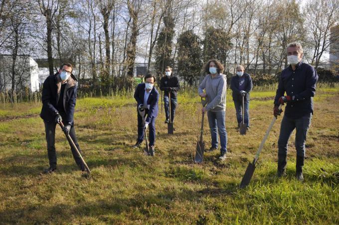 Curieus plantte honderd bomen op de bedrijfsterreinen van TE Connectivity in Oostkamp.© GST