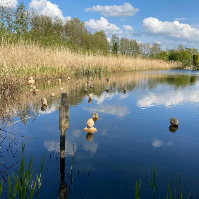 De Wijmelaars zijn weer te bewonderen in het Wijmelbroek.© DRD