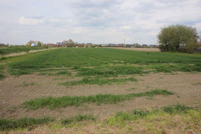 De oppositie plaatste grote vraagtekens bij de plannen van de gemeente voor een nieuwe verkaveling in het gebied naast de bufferbekkens.© foto JG