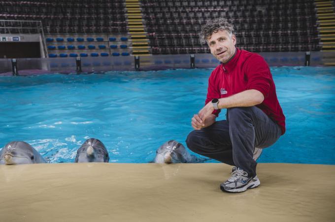 """Hoofdverzorger Sander van der Heul: """"Wat de dolfijnen doen, is geen show opvoeren. Het gaat om natuurlijk gedrag die ze ook in het wild vertonen.""""© Olaf Verhaeghe"""