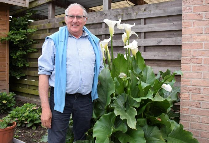 Burgemeester Dirk Sioen kan zich best ontspannen in de nabijheid van bloemen en planten. (foto ZB)