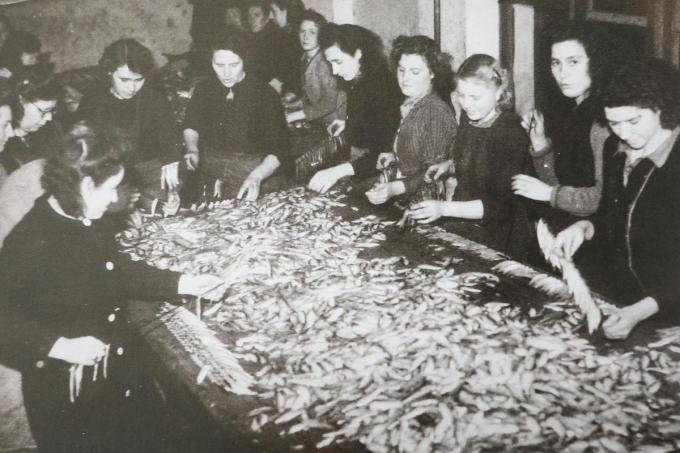 Arbeidsters sorteren verse sprot in de rokerij La Couronne.