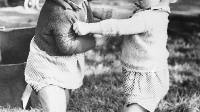 concurrentie rivaliteit tussen broers en zussen