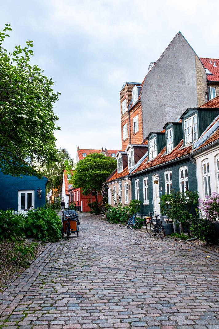 Passer par l'adorable rue Møllestien