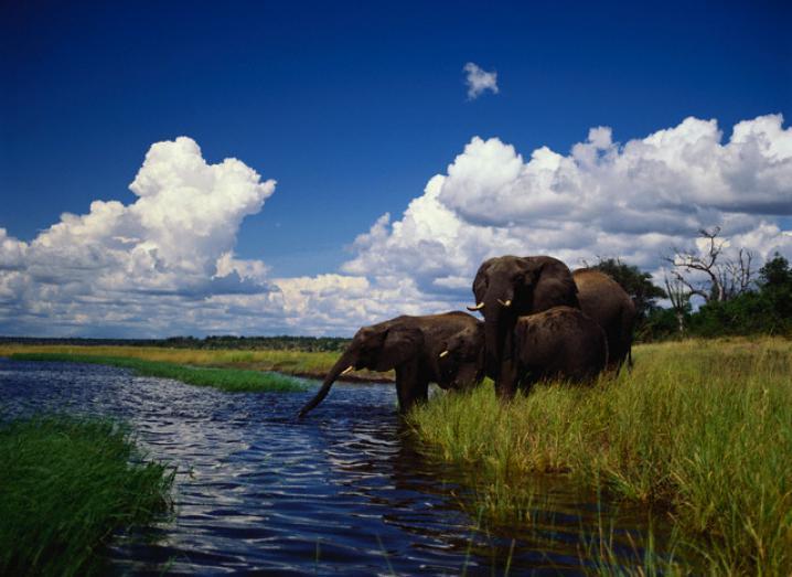 Botswana, Afrique