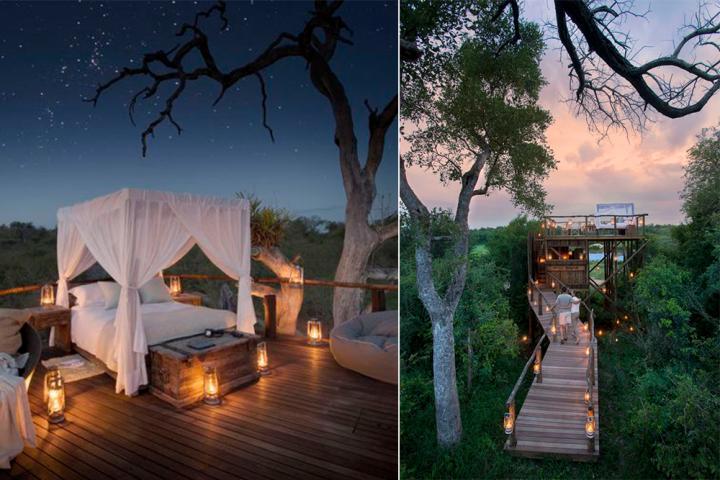 De Magische Boomhut : Wauw in deze boomhut midden in de jungle slaap je onder de sterren