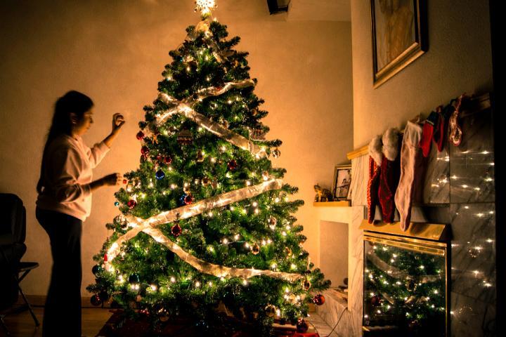 Laat Je Kerstboom Om Deze Vieze Reden Niet Te Lang In Huis Staan