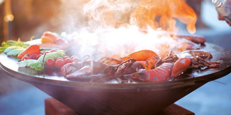 Ofyr-barbecue of vuurschaal