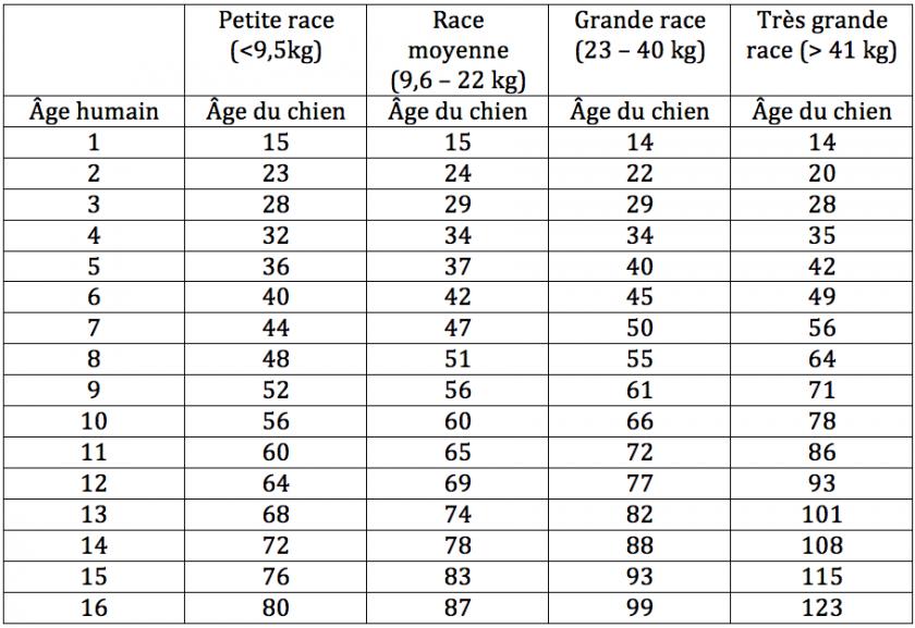 On Ne Calcule Pas L Age D Un Chien En Multipliant Par 7 Femmes D Aujourd Hui