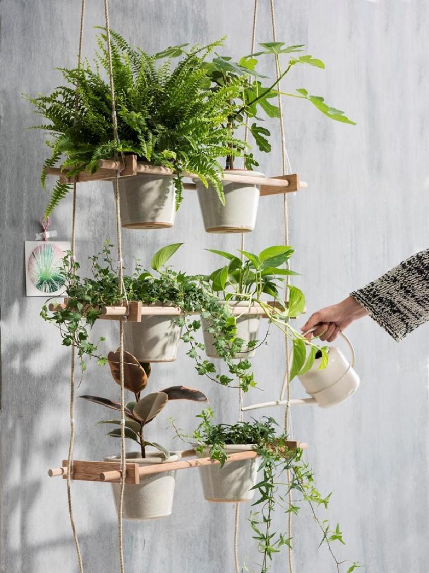 plantenetagère