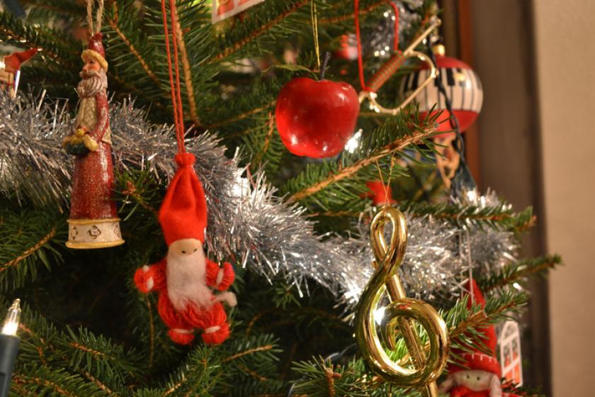kerstboom kiezen