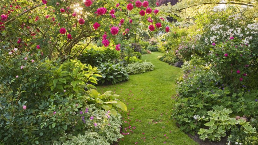 Jardin d\'ornement: 5 conseils pour créer un jardin ...