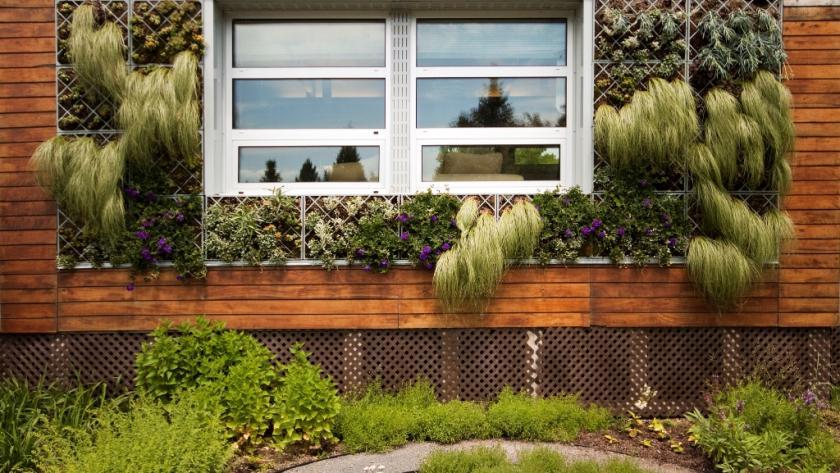 Verticale Tuin Maken : Verticaal tuinieren zo begin je eraan libelle