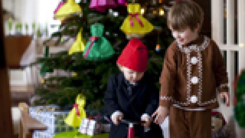 Fonkelnieuw 30 unieke kerstballen - Libelle SV-97