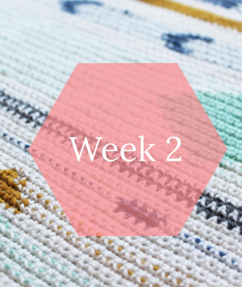 La Maison Victor Nl Dolly Plaid Patroon Week 2