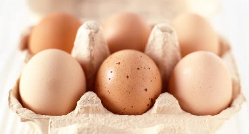 10 recettes avec un œuf