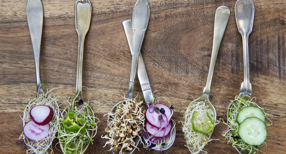 Végétarien, végétalien…. Quelle est la différence?
