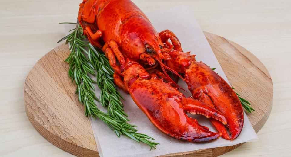 Comment choisir et préparer du homard?