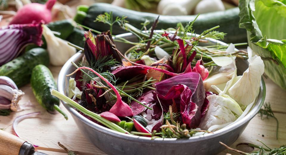 6 déchets de cuisine qui feront des merveilles dans vos plantes ou au potager